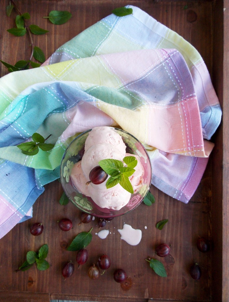 Gooseberry Mint Ice Cream | Havocinthekitchen.com