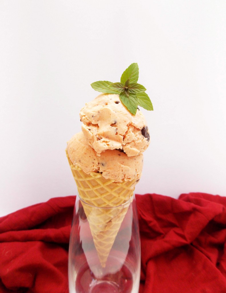 Watermelon Mint Chocolate Ice Cream | Havocinthekitchen.com