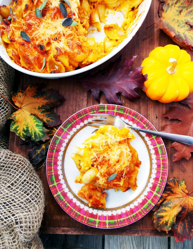 Butternut Squash Mac and Cheese|Havocinthekitchen.com